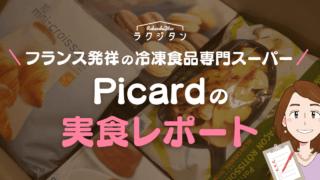 ピカールの実食レポートの表紙