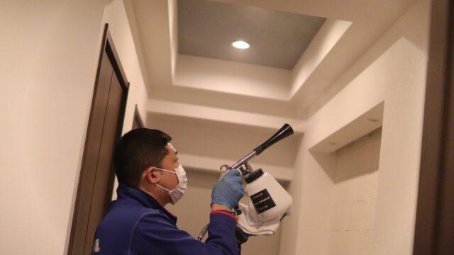 光触媒抗菌コーティングの体験談・料金相場と効果を検証